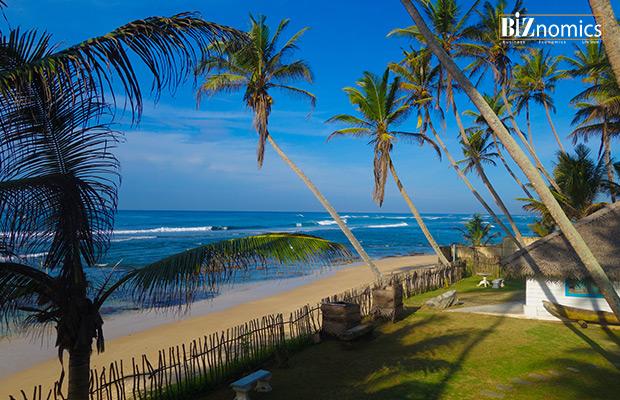 Octopus-Reef-Sri-Lanka-01